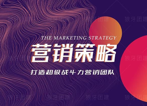 营销策略--打造超级战斗力营销团队